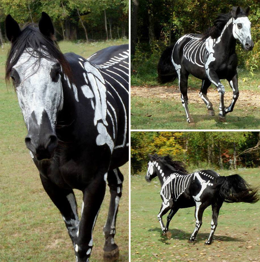 Beschilderd spook paard