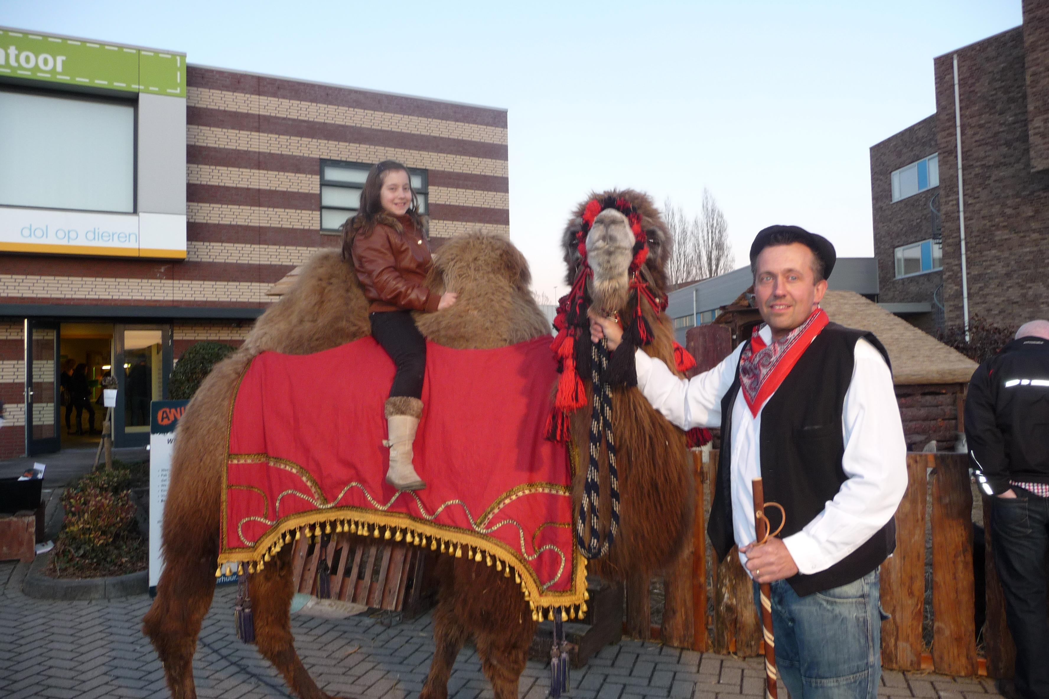Kamelen-ritjes-2