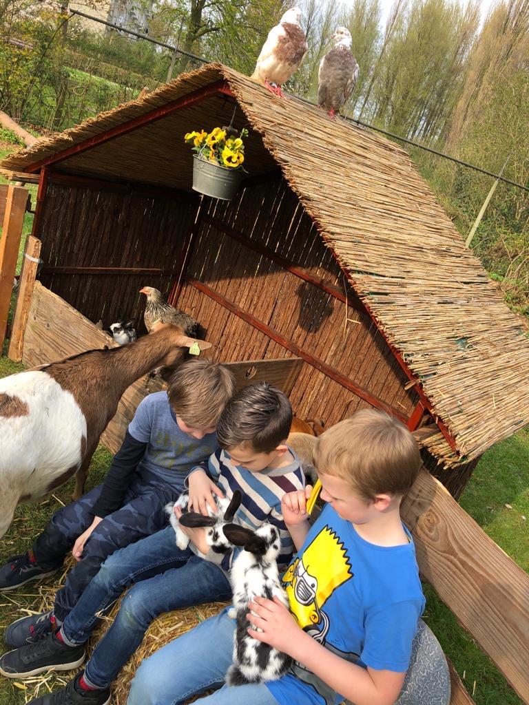 Knusse-kinderboerderij-1