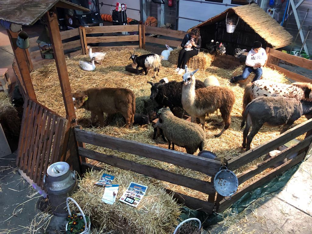 Knusse-kinderboerderij