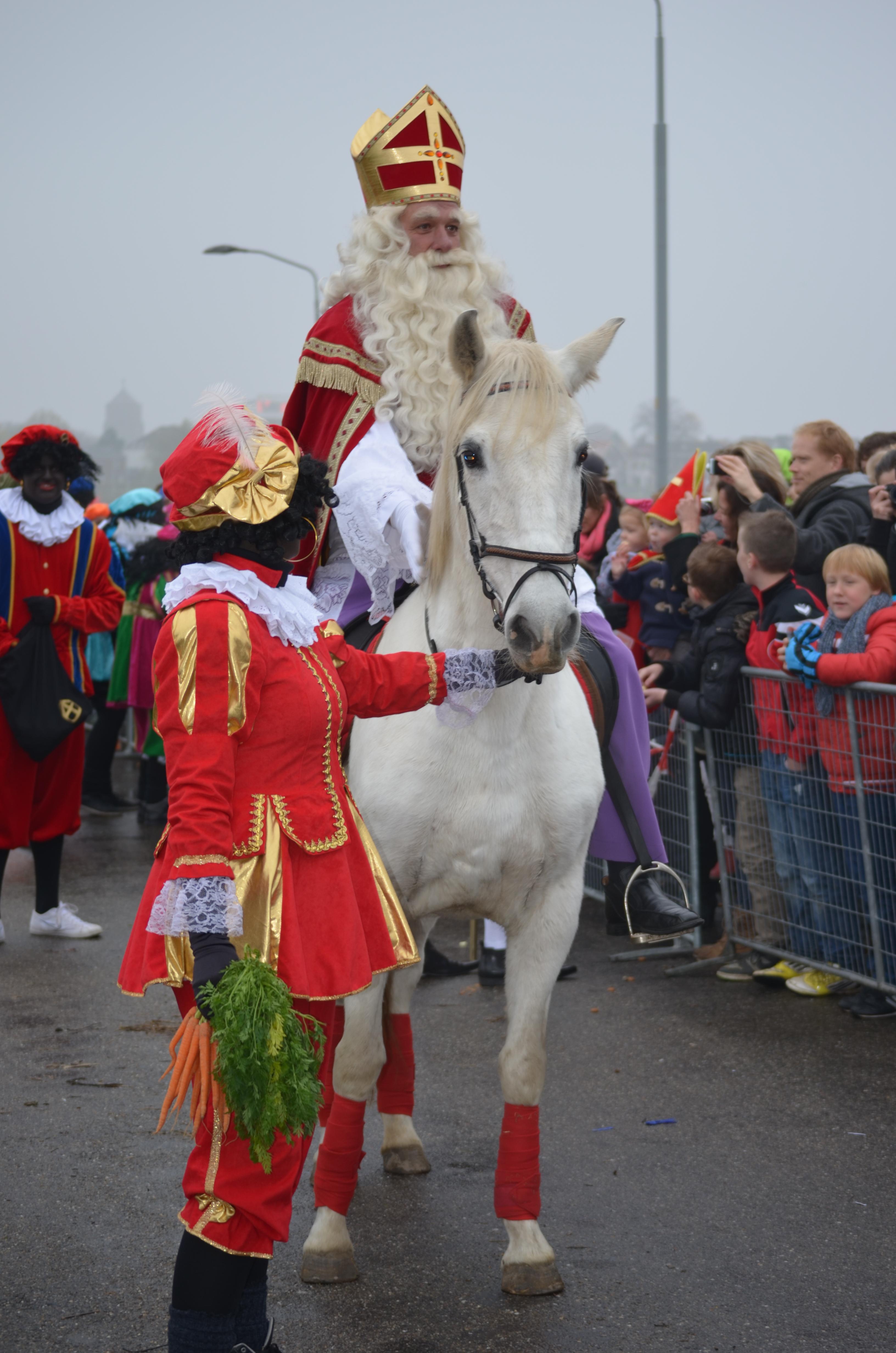 Sinterklaas Te Paard Animal Verhuur
